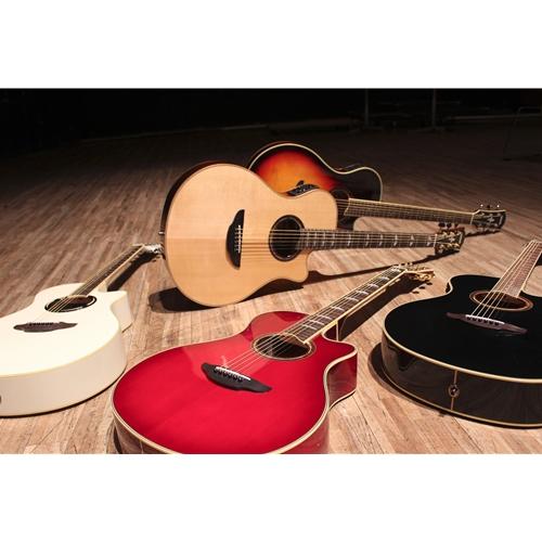 Robert's Musical Instruments - Yamaha APXT2 Mini Thinline Cutaway Acoustic  Electric Guitar